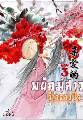 พยัคฆ์สาวจ้าวดวงใจ亲爱的 เล่ม 3 (จบ)