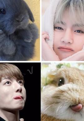 กระต่ายเป็นสัตว์ขี้เอา / 3P nc20+++